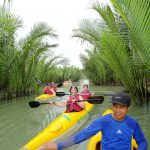 Tour Guide Rows Group Into Palm Forests