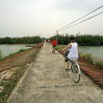 A Group Bike Tour In Hoi An Countryside
