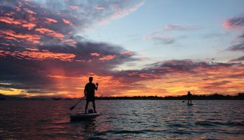 SUP SUNRISE PADDLE TO LOCAL LIFE