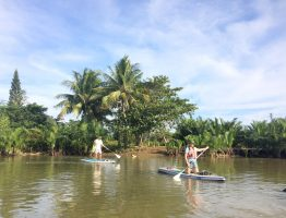 EASY SUP ALONG COCOPALM RIVER